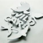 shaz-madani_paper-typefaces_3