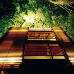 4treehouse_2