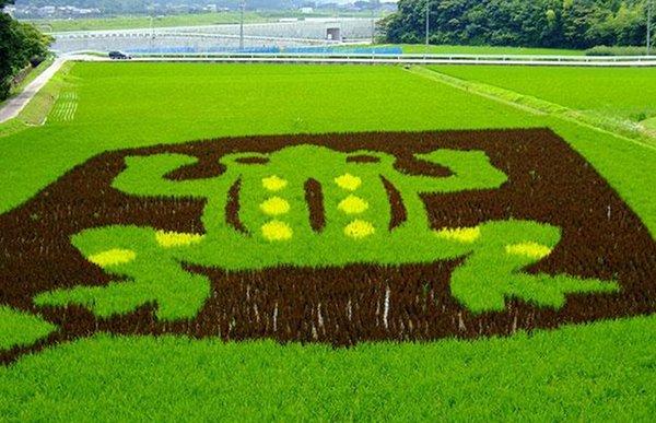 japanese-rice-murals_4