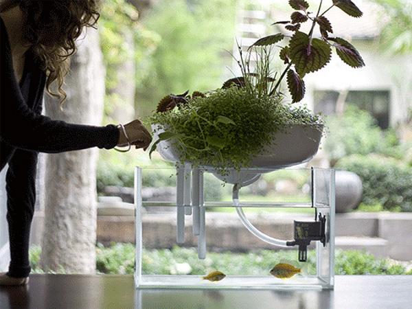 floating garden benjamin graindorge duende studio 5 Floating Garden by Duende Studio