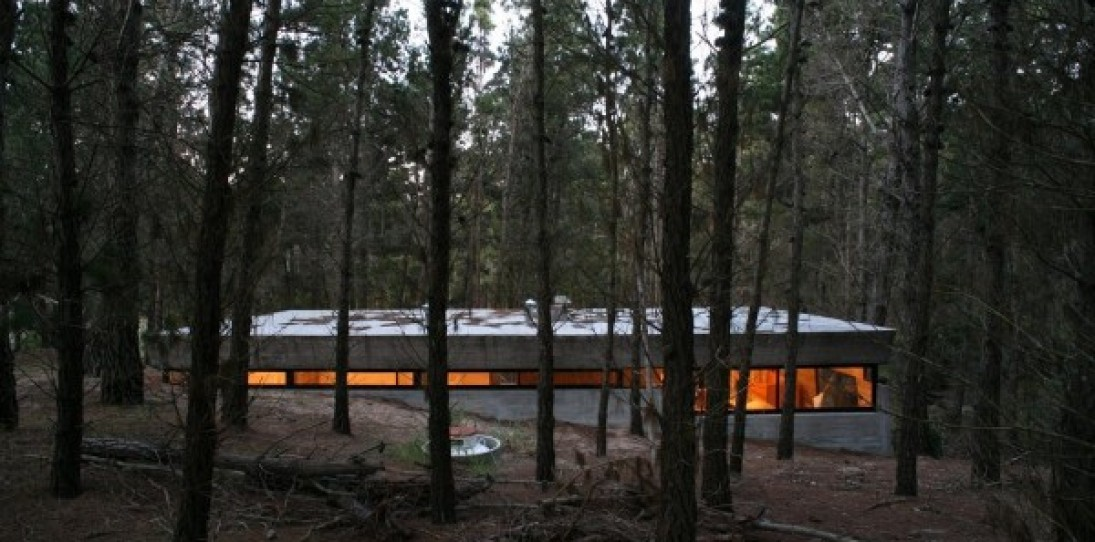 Concrete House in Mar Azul Forest, Argentina