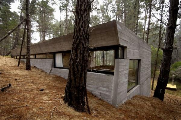 concrete-house-mar-azul-forest_BAK-architects_2