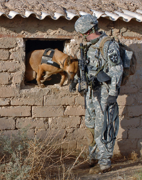 dogs-of-war_8