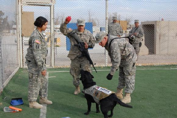 dogs-of-war_9
