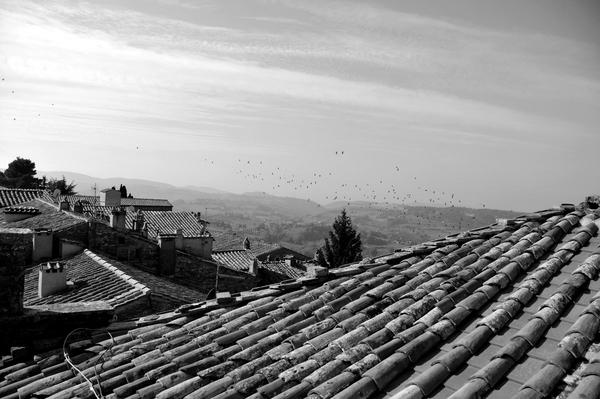 Toscana Photography