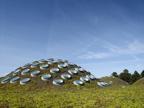 California Academy of Sciences by Renzo Piano 1