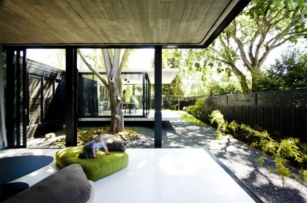 Elm and Willow House by Architects EAT