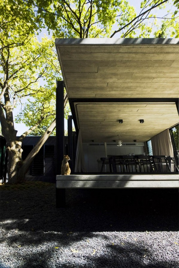 Elm and Willow House by Architects EAT 22