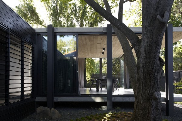 Elm and Willow House by Architects EAT 7