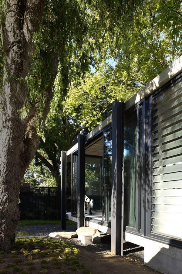 Elm and Willow House by Architects EAT 8