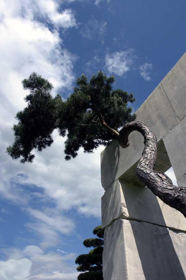 tree-museum_1