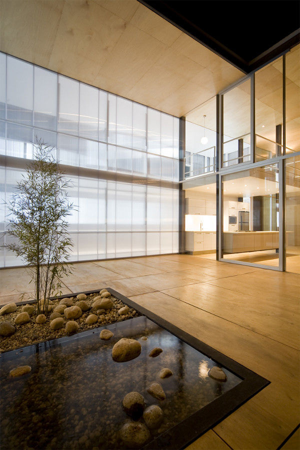 X House by Arquitectura X 2