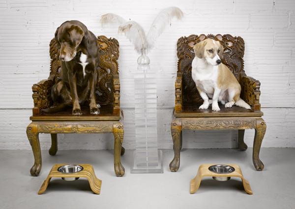 roxie doggie bowls 1 Roxie Doggie Dog Bowls