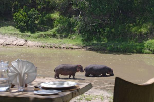 Naibor Luxury Safari Retreat – Kenya 11