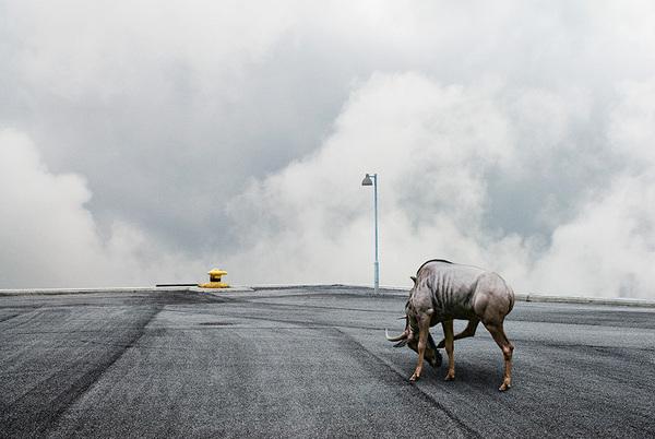 The Isle of Human by Johan Rosenmunthe 4