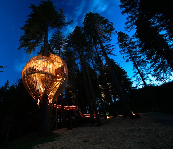 Yellow Treehouse Restaurant – New Zealand 1