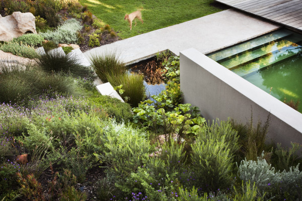 Bridle Road Residence Cape Town 7