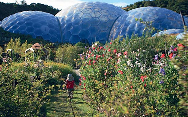 Eden Project World's Largest Greenhouse 1