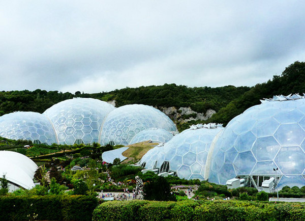 Eden Project World's Largest Greenhouse 11