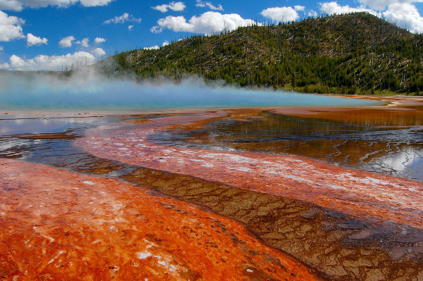 Yellowstone National Park 1