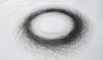 Tony Orrico Performance Drawing