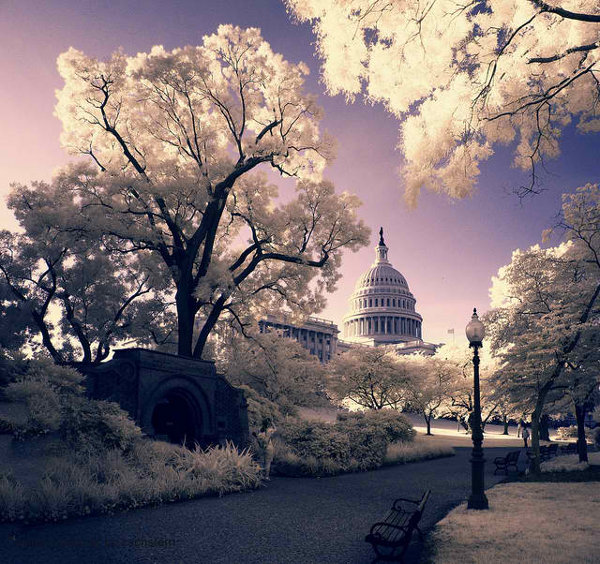 Washington DC Photography by Zach Stern 1