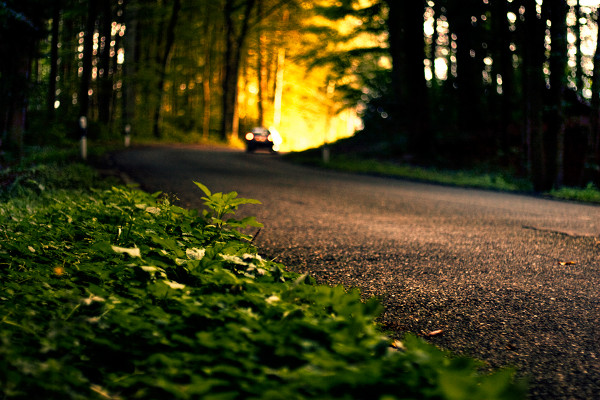 Autumn Road by philograf Making Memories: How to Photograph the Ultimate Summer Road Trip