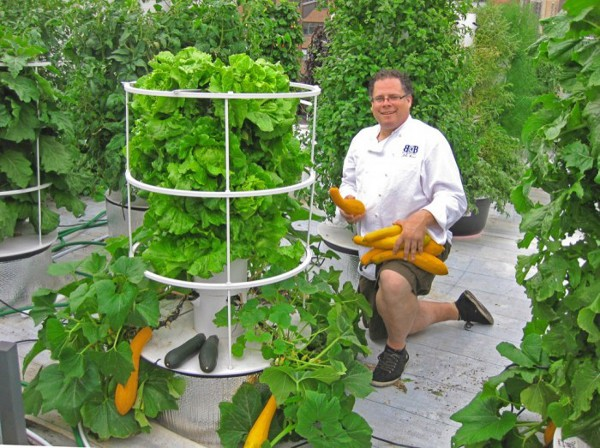 Vertical Hydroponic Gardening 2 Independent at Home: Six Systems for Self Sufficient Living