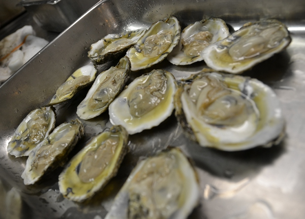 Sideberns Oysters