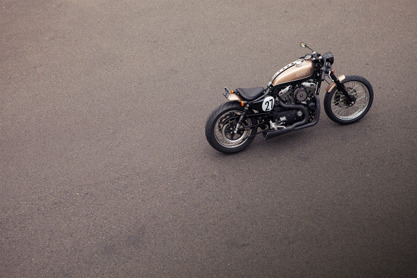 Bald Terrier 1200 by Deus Ex Machina 6 Bald Terrier 1200 by Deus Ex Machina