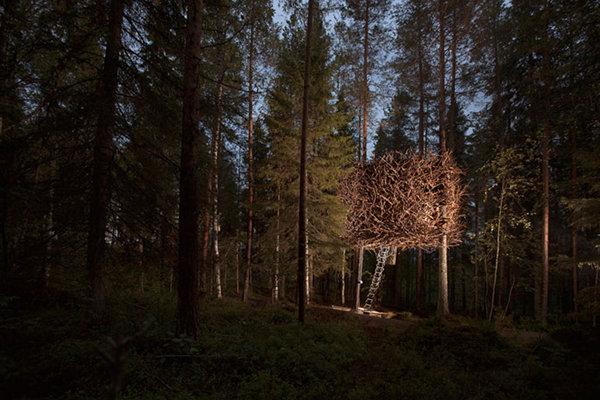 Treehotel – Sweden 15