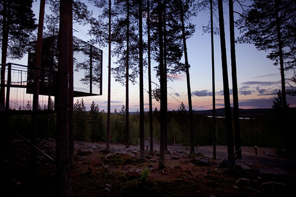 Treehotel – Sweden 4