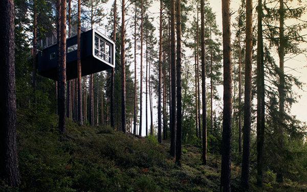 Treehotel – Sweden 9