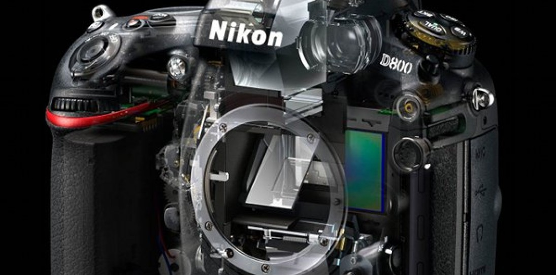 Nikon D800 Digital SLR Powerhouse