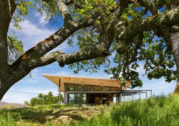 Caterpillar-House-Feldman-Architecture-7