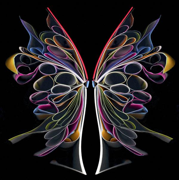 Cara Barer butterfly 9 Cara Barers Book Art
