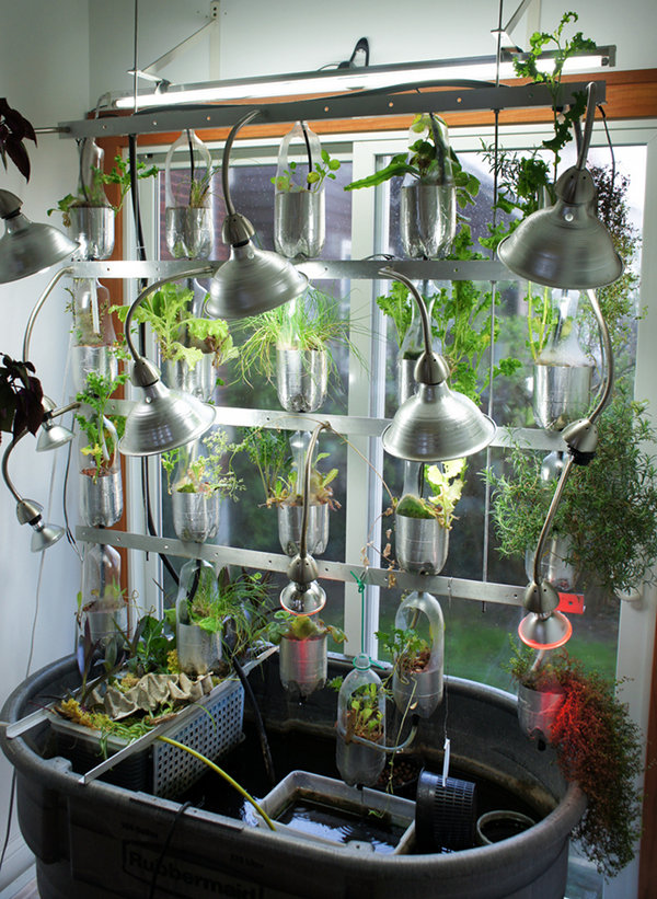 Geeky Gardening How To Grow Vegetables With Green Technology