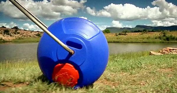 Hippo Roller 1