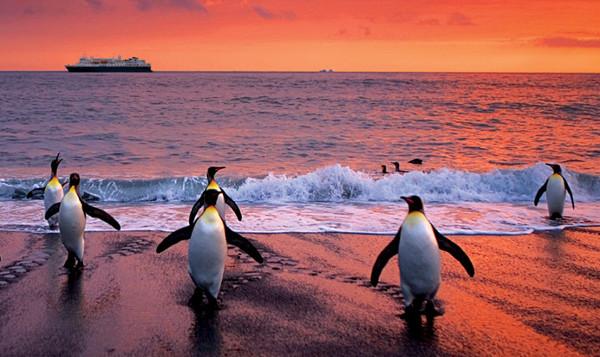 National Geographic Antarctica – 2