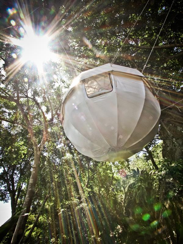 Cocoon Tree Tent 6 Cocoon Tree Tent