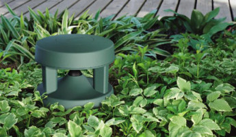 Backyard Bucket List: from the Grill to the Garden