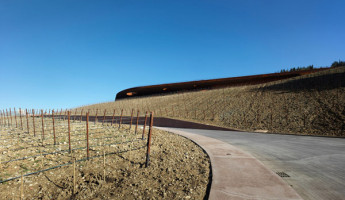Cantina Antinori Winery – Italy