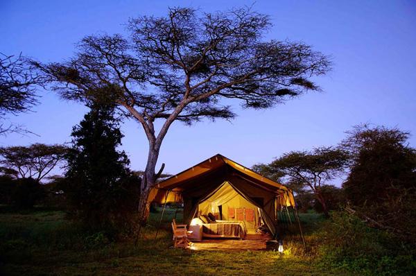 Lamai Serengeti Safari Lodge 1