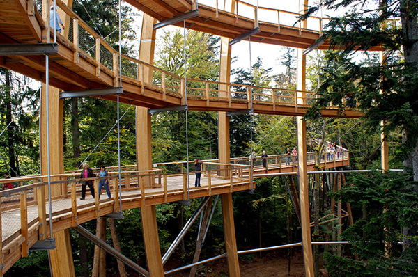Tree Top Walkway Bavarian Forest 1 Tree Top Walkway   Bavarian Forest