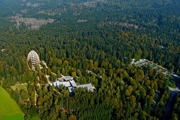 Tree Top Walkway – Bavarian Forest 10
