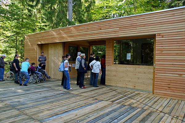 Tree Top Walkway – Bavarian Forest 12