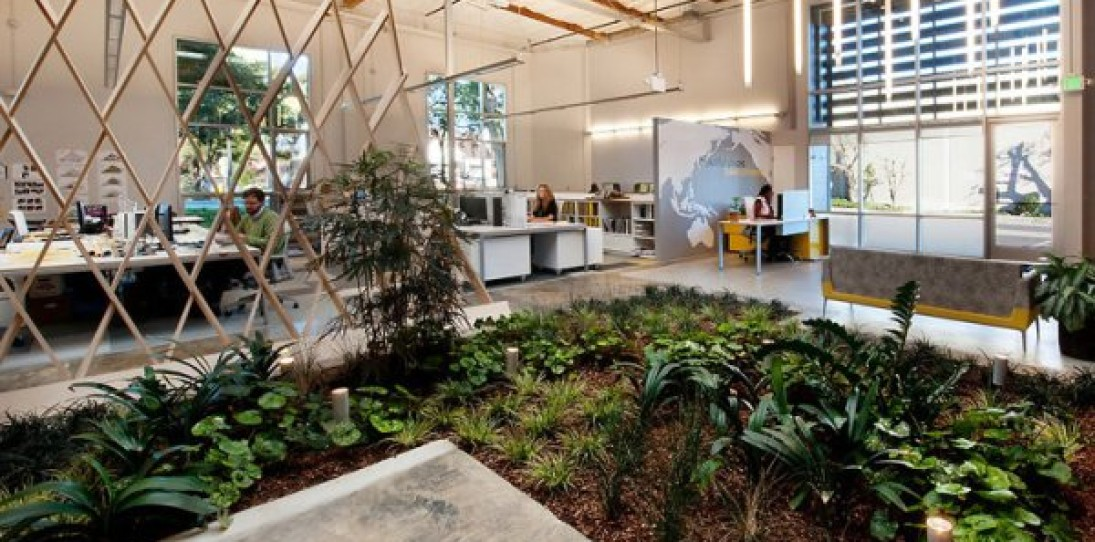 An Office with a Garden