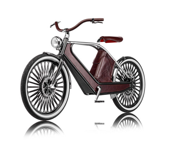 Cykno Electric Bicycle 4