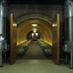 Cave Winery - California 5