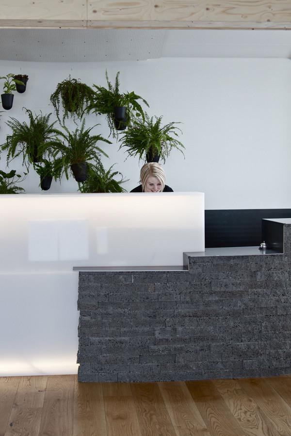 Ion Hotel - Reykjavik 7
